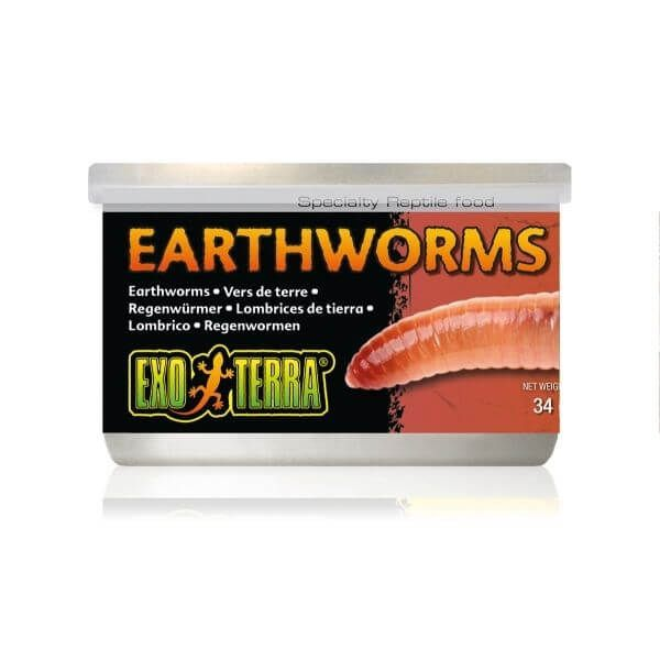 Exo Terra  Canned Earthworms 34gm